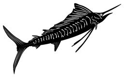 Schwarzweiss-Segelfischillustration Lizenzfreies Stockfoto