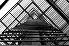 Schwarzweiss-Streifen Stockfoto