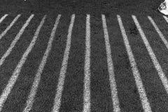 Schwarzweiss-Streifen durch die Sonne Lizenzfreie Stockfotografie