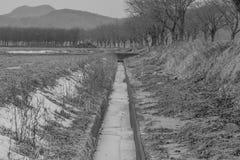 Schwarzweiss vom Wasser eingefroren im calvert Stockfotografie