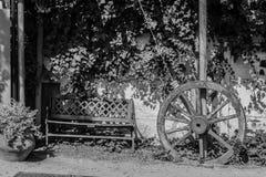 Schwarzweiss von einem Rad und von einer Rückseite Stockfoto