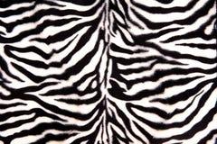Schwarzweiss-Zebra-Muster Lizenzfreies Stockbild