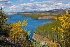 Schwatka湖,育空,西北地区,加拿大 免版税库存图片