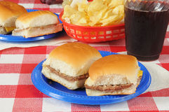 Schweber mit Kartoffelchips Lizenzfreies Stockfoto