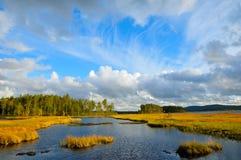 Schweden Lizenzfreies Stockbild