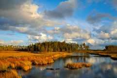 Schweden Lizenzfreie Stockbilder
