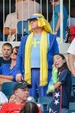 Schweden-Fans Stockbilder