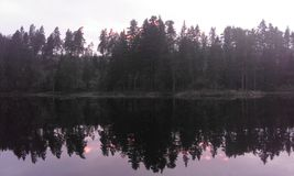 Schweden-Naturwasser-Waldsommer Lizenzfreie Stockbilder