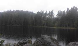 Schweden-Naturwasser-Waldsommer Stockbild