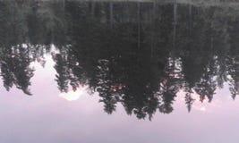 Schweden-Naturwasser-Waldsommer stockfotografie