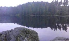 Schweden-Naturwasser-Waldsommer Stockfotos