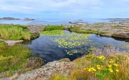 Schwedische archipelogo Ansicht Lizenzfreies Stockbild