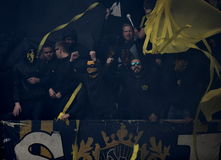 Schwedische Fans Lizenzfreies Stockfoto