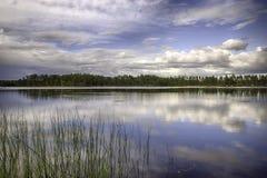 Schwedische Landschaft Lizenzfreie Stockbilder