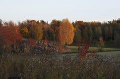Schwedische Landschaft lizenzfreie stockfotografie