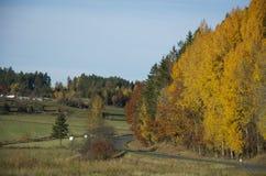 Schwedische Landschaft lizenzfreies stockbild