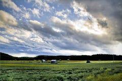 Schwedische landwirtschaftliche Landschaft lizenzfreie stockfotografie