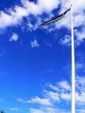 Schwedische Markierungsfahne Lizenzfreie Stockfotos