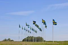 Schwedische Markierungsfahnen lizenzfreies stockbild