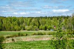 Schwedische Natur Stockbild