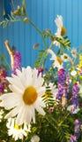 Schwedische Sommer-Blumen stockfoto