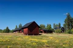 Schwedischer Bauernhof mit typischen roten hölzernen Gebäuden Stockbilder