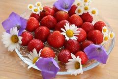 Schwedischer Hochsommernachtisch - Erdbeeren Lizenzfreies Stockbild