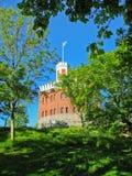 Schwedisches Schloss Lizenzfreie Stockbilder