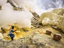 Schwefel-Bergmann Extracting Sulfur aus Krater von Vulkan Kawah heraus Ijen Lizenzfreies Stockbild