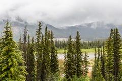Schwefelberg in Banff Stockfotografie