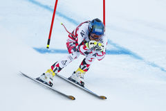 SCHWEIGER Patrick i FIS alpina Ski World Cup - 3rd toppna MÄN Arkivfoto
