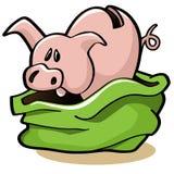 Schwein in einem Poke Stockfotos