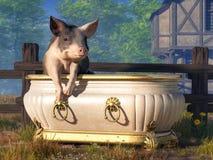 Schwein in einer Badewanne lizenzfreie abbildung