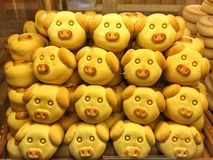 Schwein-förmiges Gebäck stockfotografie
