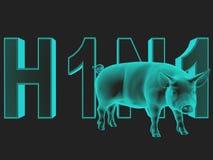 Schwein-Grippe. Lizenzfreie Stockfotografie