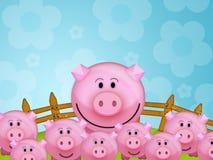 Schwein im Bauernhof Stockfotografie