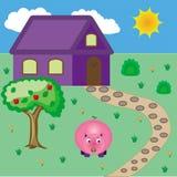 Schwein nahe Haus Stockfoto