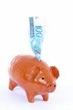 Schwein-Querneigung Stockfoto