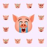 Schwein in Schrei emoji Ikone Schwein emoji Ikonen-Universalsatz f?r Netz und Mobile vektor abbildung