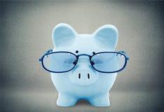 Schwein, Steuer, Finanzberater Stockfoto