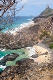 Schwein-Strand Fernando de Noronha Island Lizenzfreies Stockbild