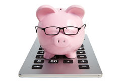 Schweinbank und -taschenrechner Stockbild