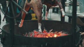 Schweinbraten auf dem Grill stock video