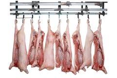 Schweinefleisch für Verkauf Lizenzfreies Stockbild