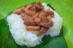Schweinefleisch gebraten und Reis Lizenzfreies Stockfoto