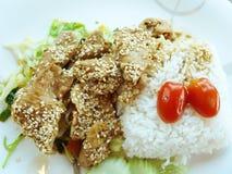 Schweinefleisch gebratene koreanische Soße und thailändischer Reis Lizenzfreies Stockfoto