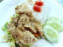 Schweinefleisch gebratene koreanische Soße und thailändischer Reis Stockfoto