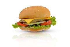 Schweinefleisch/Hühnerburger mit Käse Lizenzfreie Stockfotografie