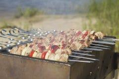 Schweinefleisch shashlik Lizenzfreie Stockbilder