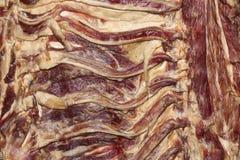 Schweinefleischrippen Stockfotos